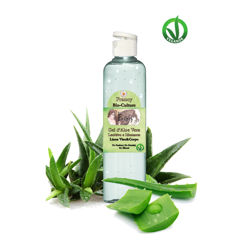Come conservare il GEL di ALOE VERA in casa! - TGregione.it